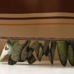 base in ceramica2